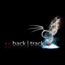Armitage agora no BackTrack